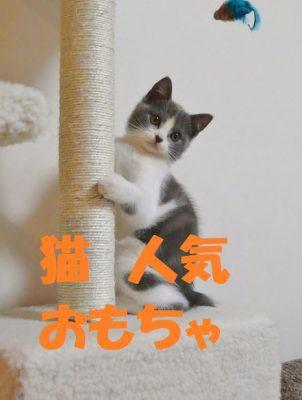 猫人気おもちゃ