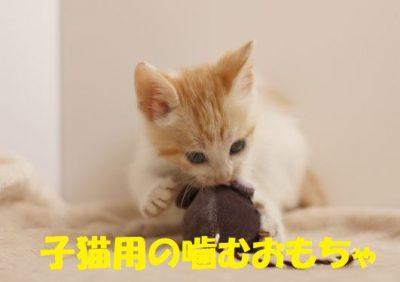 子猫用の噛むおもちゃ