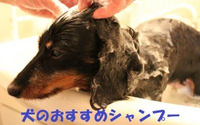 犬のおすすめシャンプー